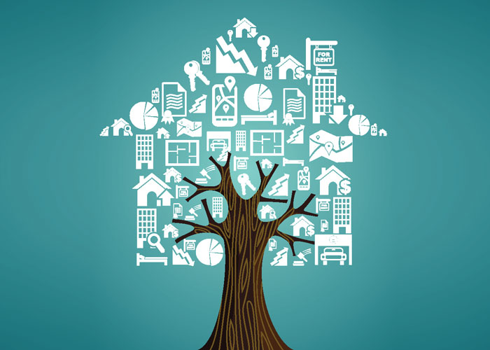 A Tree representing all the aspects Gavel and Pages Conveyancing Lawyers will help you with